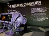 almost-scientific-the-neuron-chamber-14-of-14